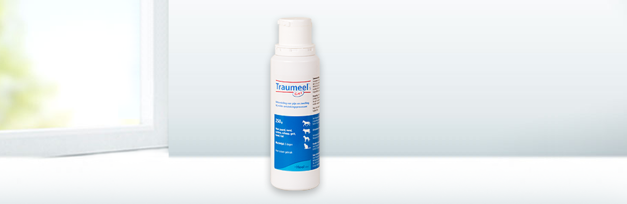 Traumeel®  veterinaire gel